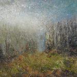 Swamplands of Burned Forest