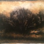 Russian Olive Grove