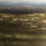 Marshy Grasslands